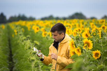 cms/images/forst-agrarwirtschaft/Referenzen-Referenzen_Forst-Agrarwirtschaft_klein.jpg