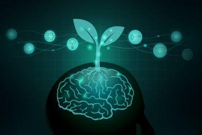 growth-mindset-kopf-blume